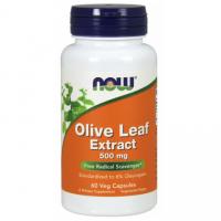 Olive Leaf extract - standaryzowany Liść Oliwny 500 mg (60 kaps.) NOW Foods